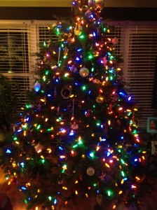 New Tree Pic