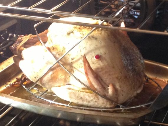 Turkey Baking