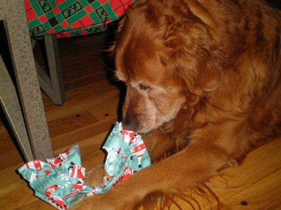 ABBA Christmas 2011