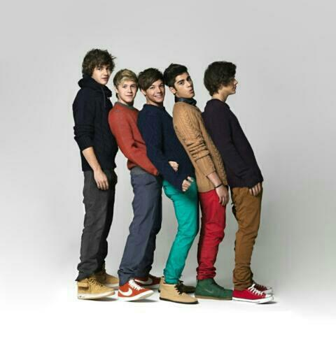 How Gay One Direction!