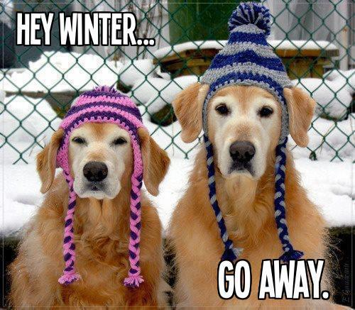 Winter Go Away