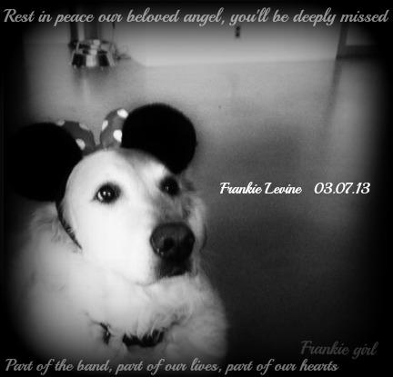 Frankie 3.7.13