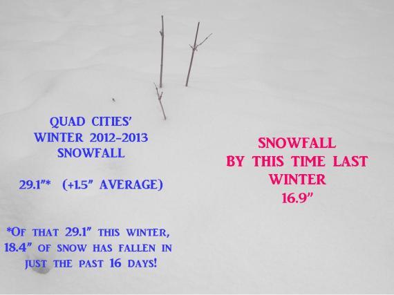 Snowfall Update