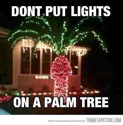 Palm Tree Lights