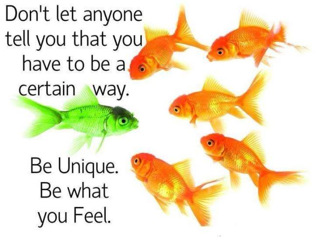 Fish Be You
