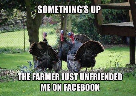 Turkey Facebook