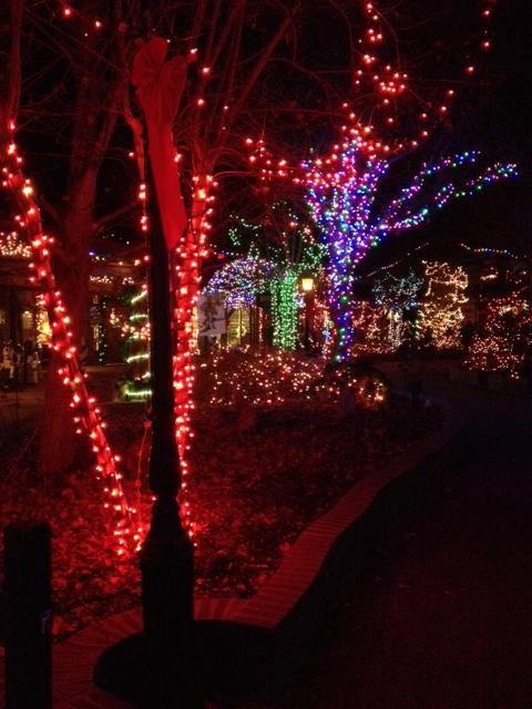 Lights at Patti's