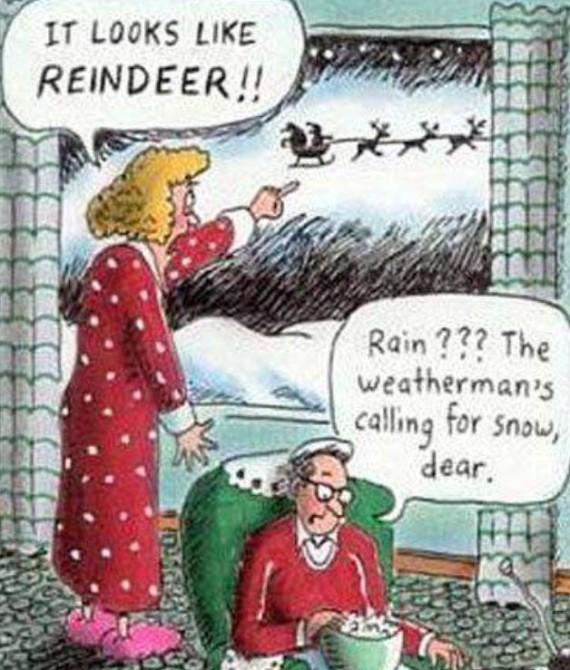 Reindeer Rain Dear