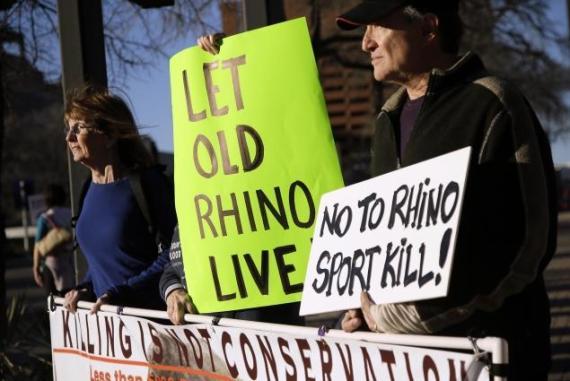 rhino-hunt-auction