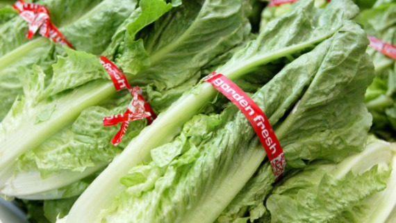 Traces Of Toxic Chemical Found In California Lettuce