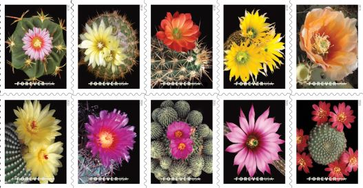 Cactus Christmas Stamps